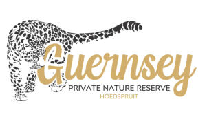 Guernsey Private Nature Reserve Hoedspruit